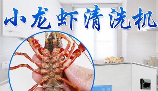 GM-755龙虾自动清洗机