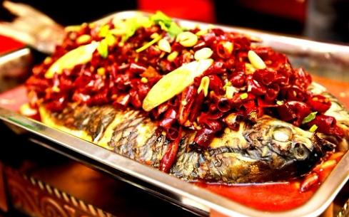 巫溪烤鱼培训