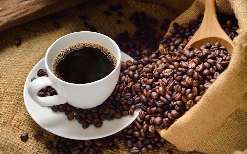 品质咖啡培训