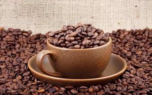 帕斯库奇咖啡店加盟多少钱?费用贵吗