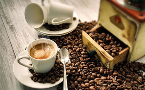 咖啡陪你咖啡一年能赚多少钱?选它成为人生赢家