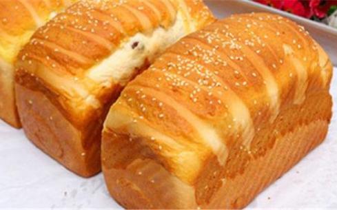 面包天使烘焙有哪些加盟支持?