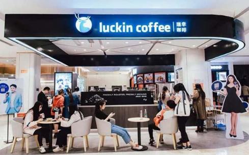 瑞幸咖啡的加盟费,一线城市投资费用不到20万!