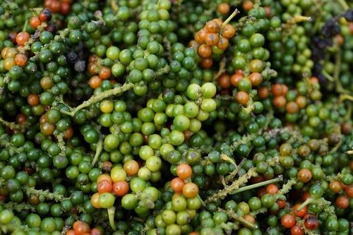 黑胡椒、红胡椒、山胡椒……谁才是香料之王