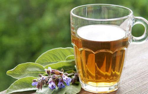有哪些茶饮料的生产设备