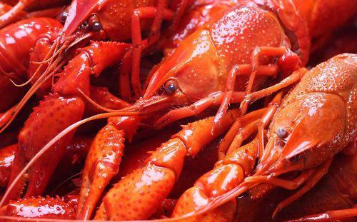 """南京新增1410个临时摊位助力复商复市,""""地摊经济""""蕴满城市温情吃了龙虾后不能吃什么,这几种食物我们需要了解一下"""