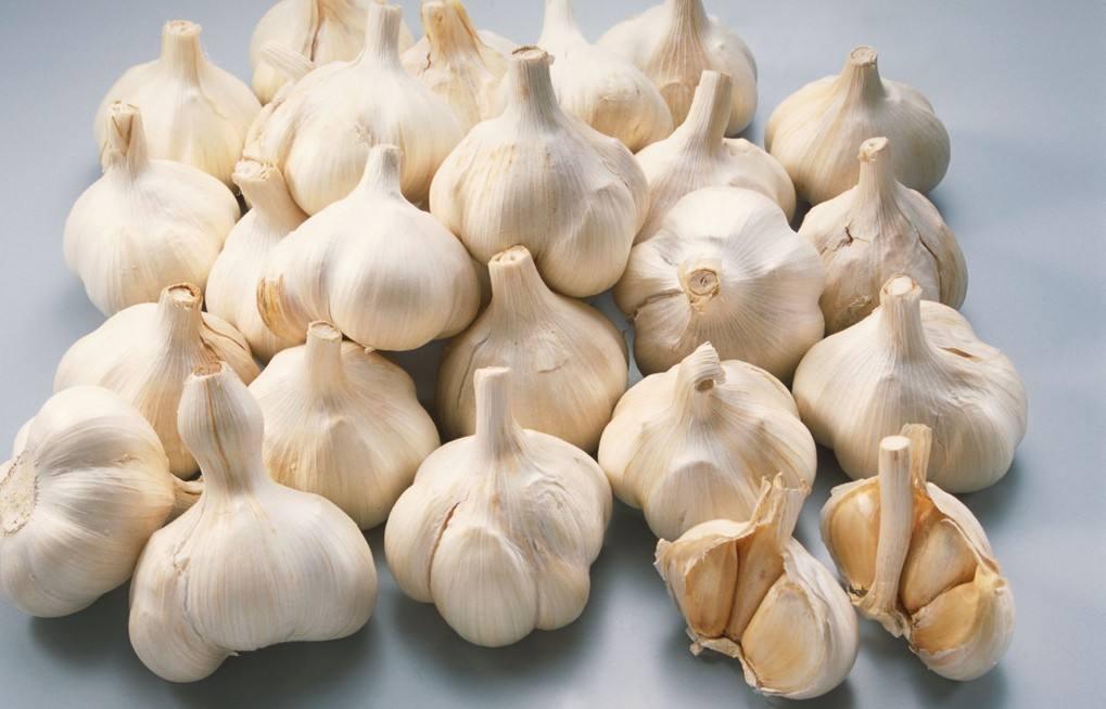 大蒜不止是调味料,更是生活中的妙招小能手