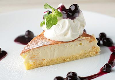 乳酪蛋糕培训