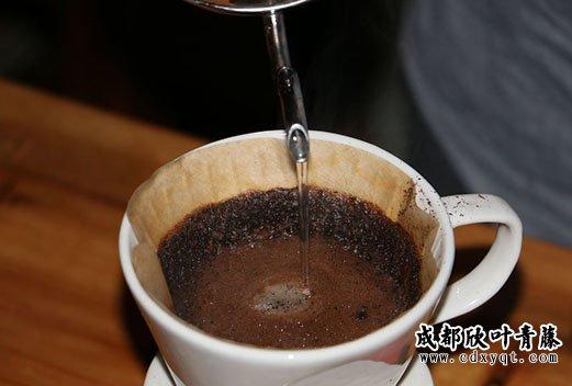 开咖啡店的利润高不高
