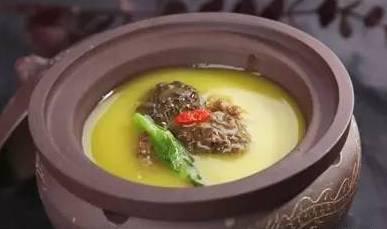 金汤羊肚菌
