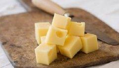 深圳奶酪培训课程